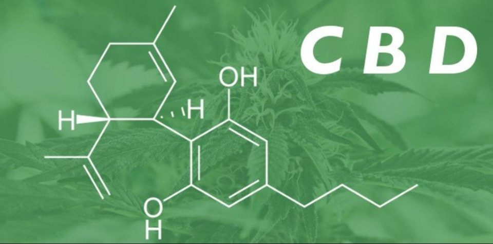 Cbd As Prevention